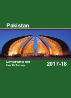 Pakistan - Demographic and Health Survey - 2019